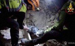 Emergenza terremoto, cane sepolto salvato a Norcia