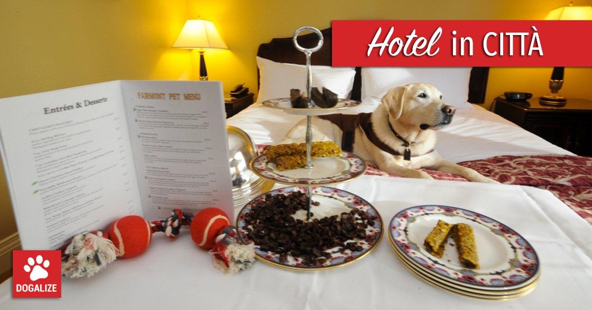 vacanze con il cane hotel pet friendly hotel che accettano cani alberghi pet friendly dove andare in vacanza con il cane hotel animali ammessi alberghi cani ammessi