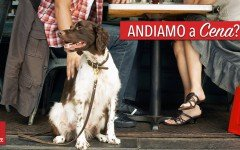 Ristoranti pet friendly: scorpi i locali vicino a te