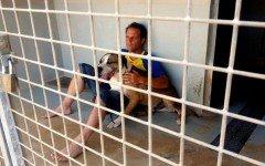 remi-gaillard-ayuda-perros-protectora-de-animales