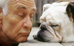 Nomi per cani: la scelta del nome del cane e le statistiche sui nomi più comuni