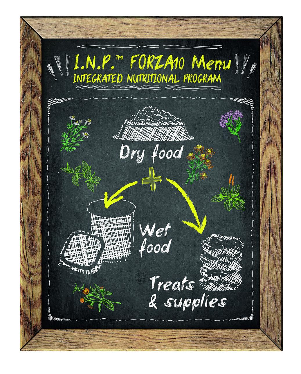 Solo crocchette per cani? Un Piano Nutrizionale Integrato adatto ai tuoi amici a 4 zampe!