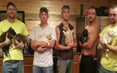 Noticia perruna: Regresan con 7 cachorros adoptados