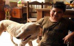 un-nino-vende-su-patineta-para-ayudar-un-perro-y-llevarlo-al-veterinario
