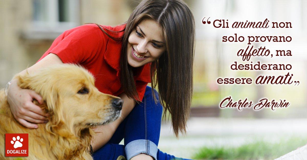 Aforismi per cani: animali e amore, un connubio perfetto, su Dogalize!