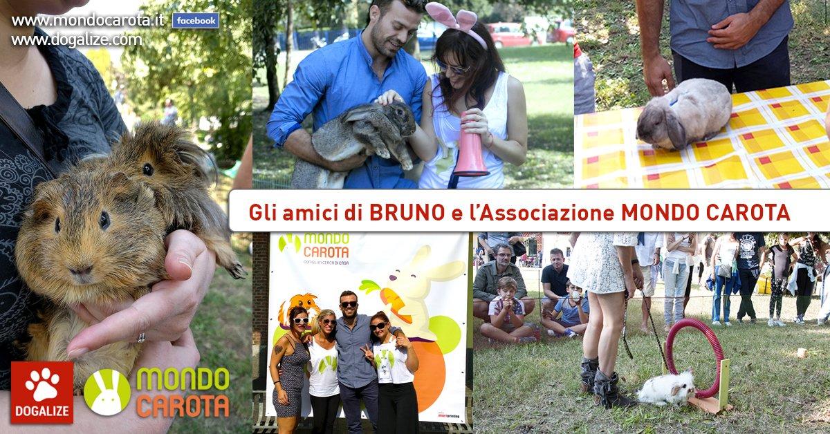 Mondo Carota: aiutiamo Bruno il coniglio