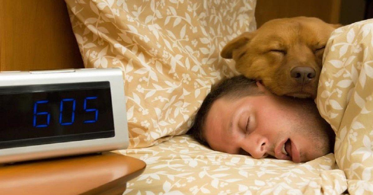 dormir-con-tu-perro-cuales-son-los-cuidados-riesgos-y-beneficios