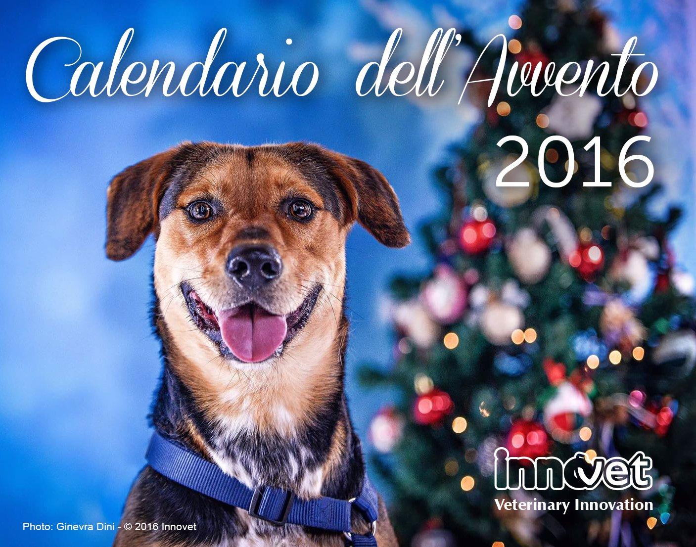 Regala pasti ai cani sfortunati, ed ai gatti abbandonati, con il Calendario dell'Avvento online!