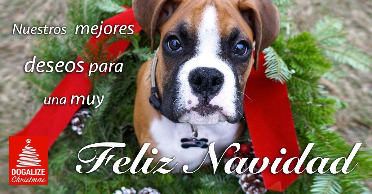 Gracias a todos y Feliz Navidad
