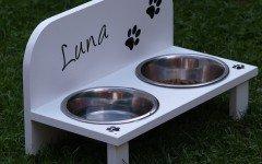 Intolleranze alimentari del cane i sintomi e le razze a rischio