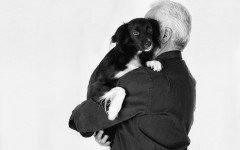 Cani e gatti ammessi in ospedale per visitare i pazienti
