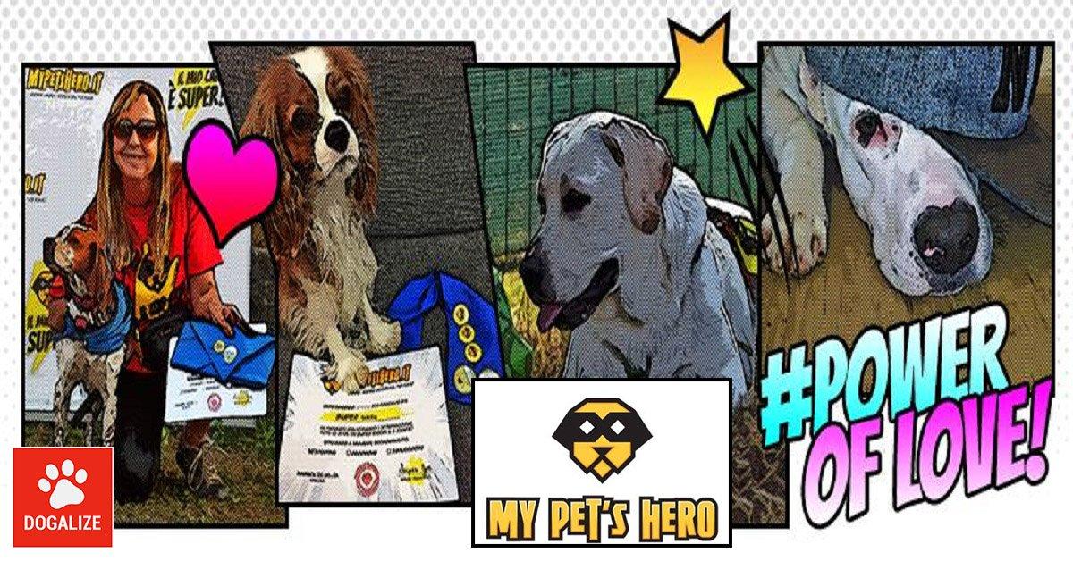 Cani olimpici: scopri i Super Giochi a 6 zampe con Dogalize e My Pet's Hero!