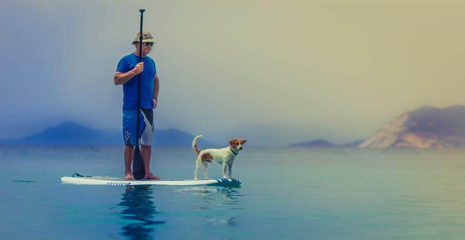 Los mejores perros para personas mayores; La compañía de un ser querido es muy importante.