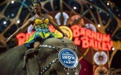 Il Circo Barnum cala il sipario dopo 146 anni di attività
