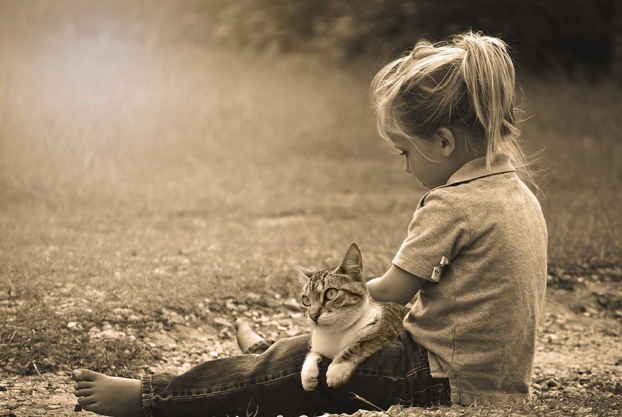 Gatti per bambini, i compagni felini dei nostri figli