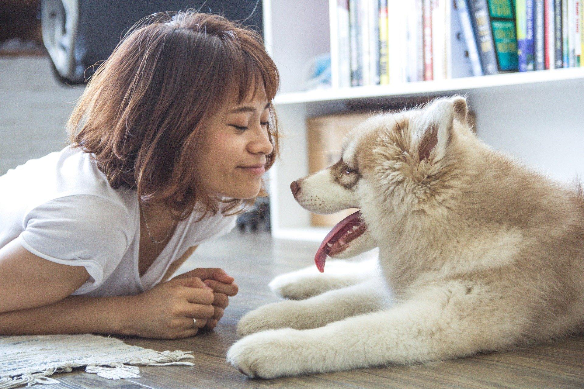 Addestrare un cane per la Pet Therapy, come farlo al meglio