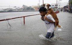 Tifon en filipinas: el niño que salvo su mascota en el tifon