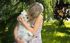 Animales Domesticos: los beneficios para nuestra salud