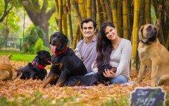 Gravidanza: la coppia non rinuncia ai suoi cinque cani