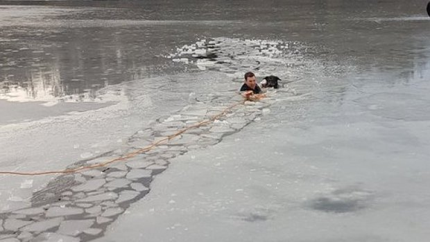 Dog rescue from frozen lake by a Police Officer