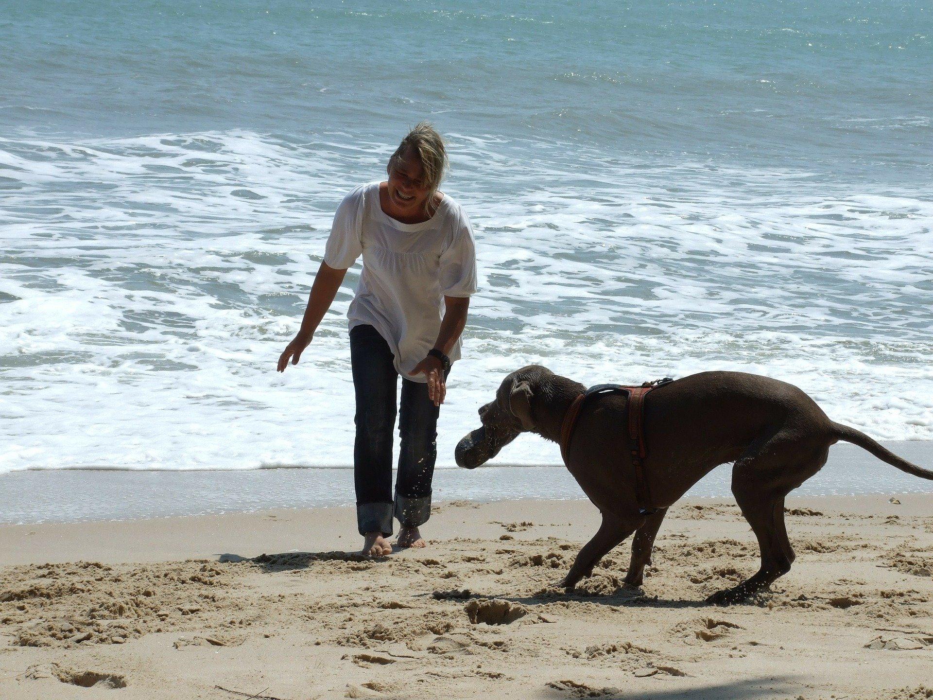 Spiagge per cani Toscana: quali sono le più famose