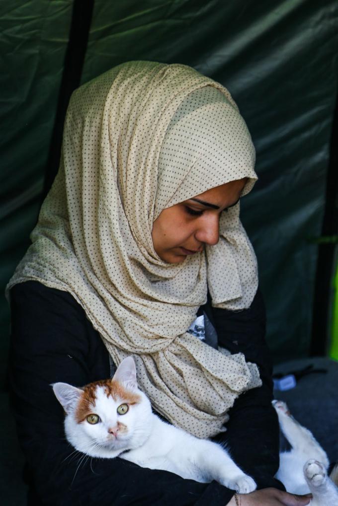 Famiglia siriana fugge dalla guerra con il proprio gatto