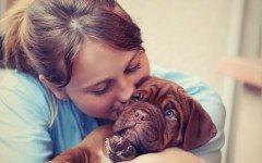 Frasi d'amore per cani: quali sono le più belle?