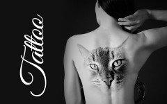 Tatuaggi gatti: i posti preferiti e i loro significati