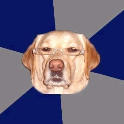 El perro racista de internet: ¿conoces su historia?