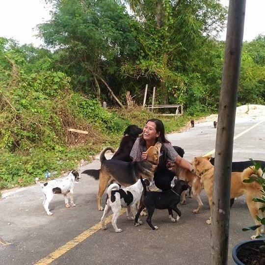 Da de comer al perro callejero, él la agradece con regalos Tua Plu