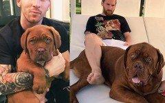 Hulk, el famoso perro de Messi