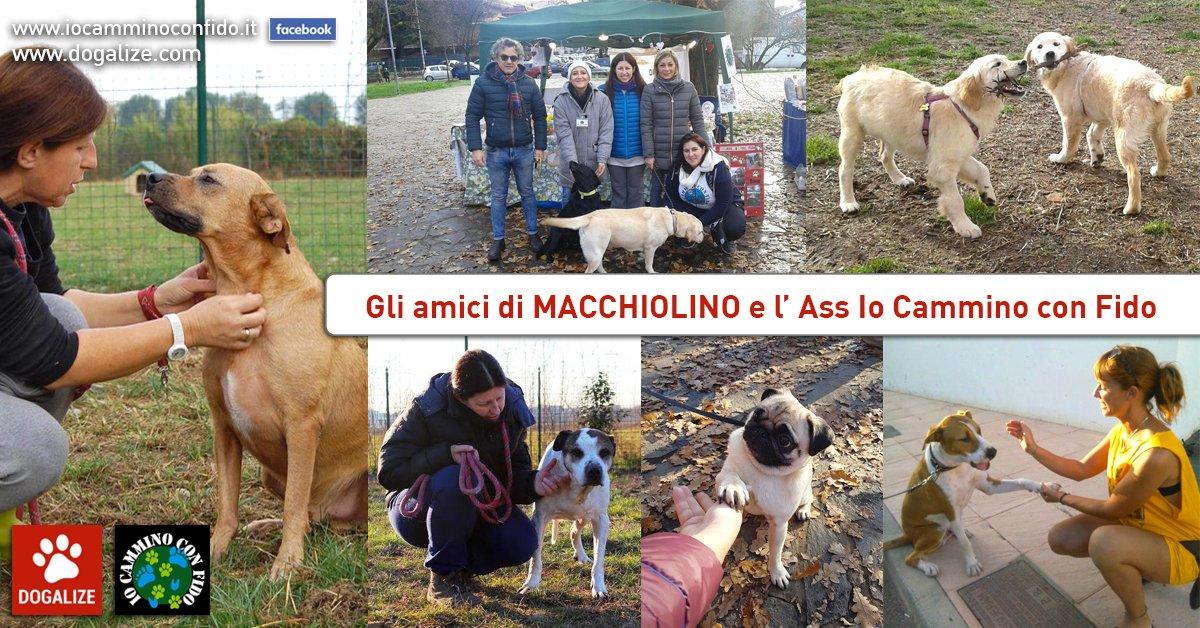 Aiutiamo Macchiolino, ospite di Io Cammino con Fido