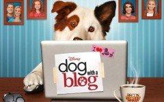 Mi perro tiene un blog: Aspectos curiosos