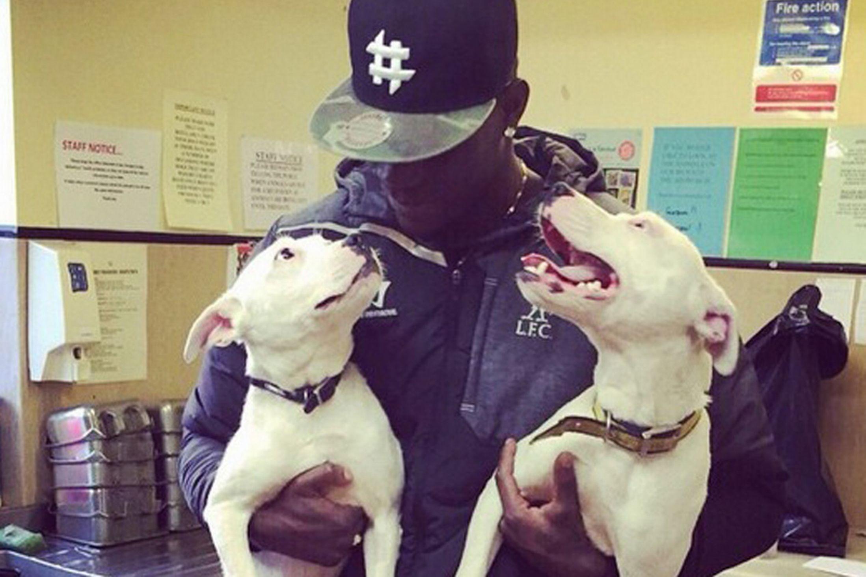 Mario Balotelli e l'amore per i suoi cani