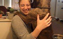 Cane abbraccia la padrona come il primo giorno
