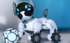 Perro robot: el perro CHiP, un canino...particular!