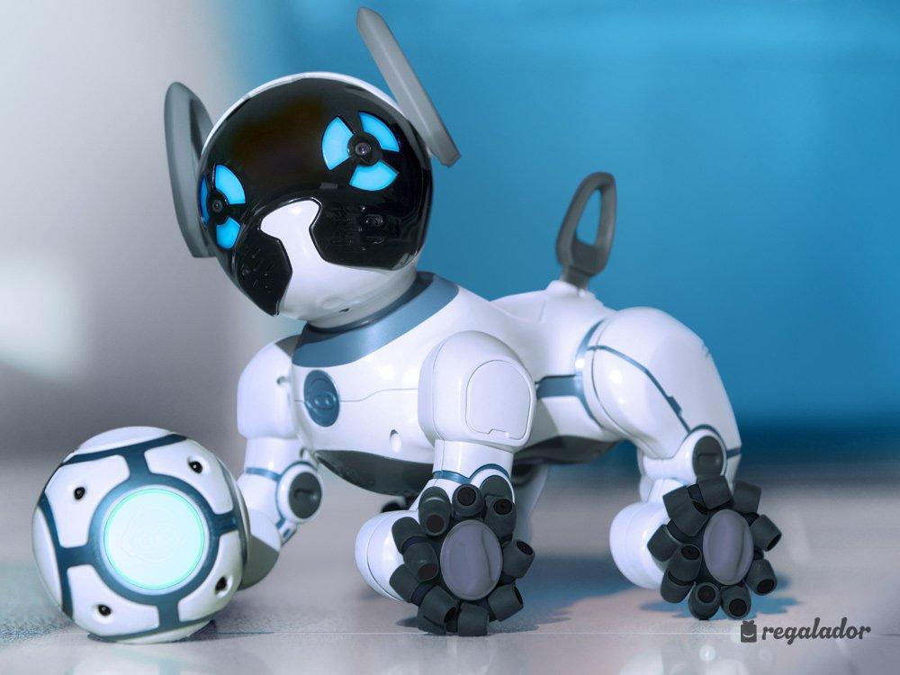 Perro robot el perro chip un canino particular dogalize - Robot que limpia el piso ...
