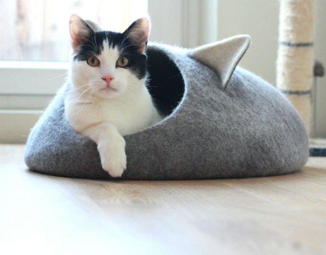 La cueva del gato: como escojer la mejor cueva para tu amigo