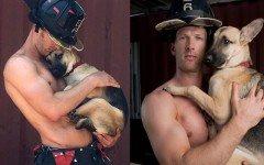 La conmovedora historia de Kimber, el perro bombero