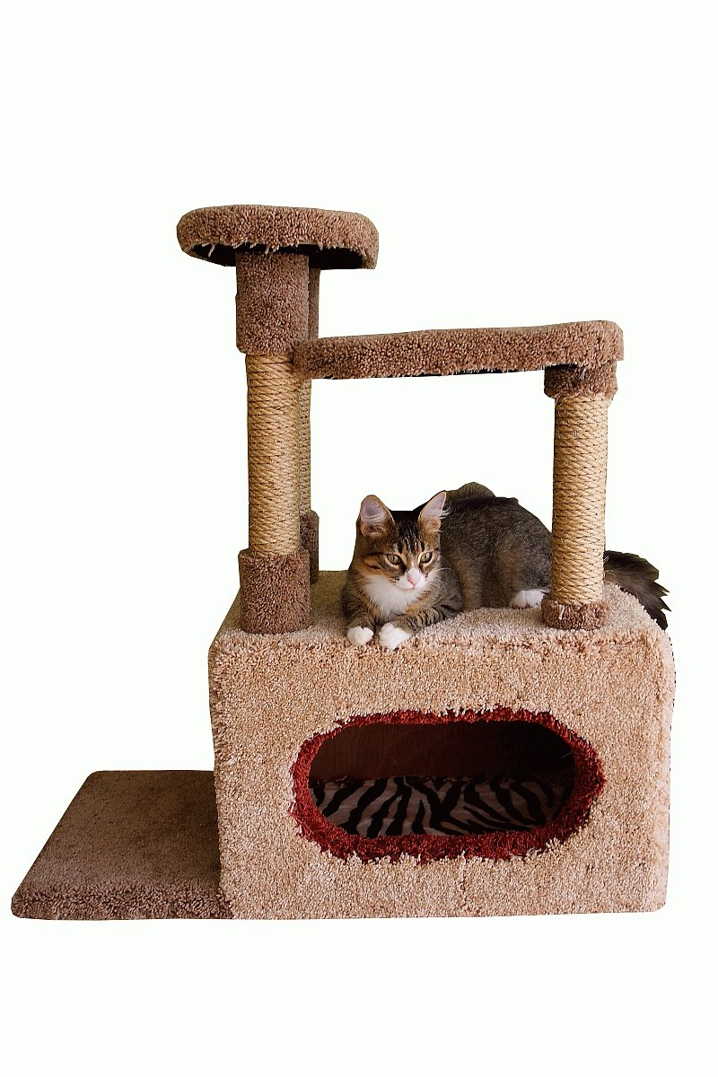 Rascadores para Gatos: rascador para gato importante en la vida de tu felino