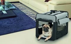 Transportin para perros: segura forma de trasladar a tu perro