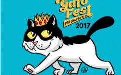 El Gato Fest: una jornada completamente felina