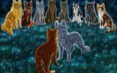 Los gatos guerreros: una fantástica novela juvenil e infantil