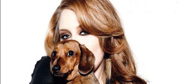 Adele e il suo inseparabile cane Louie