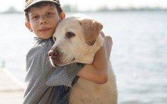 Come far convivere bambini e cani: qualche consiglio