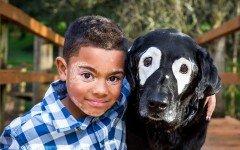 Niño con Vitíligo se recupera tras conocer un perro special