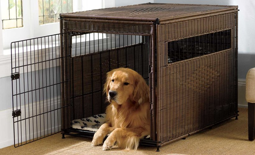 A dog crate is a way of protecting your pet from injury when he is left alone in the house. Learn what size of crate is best for your dog.