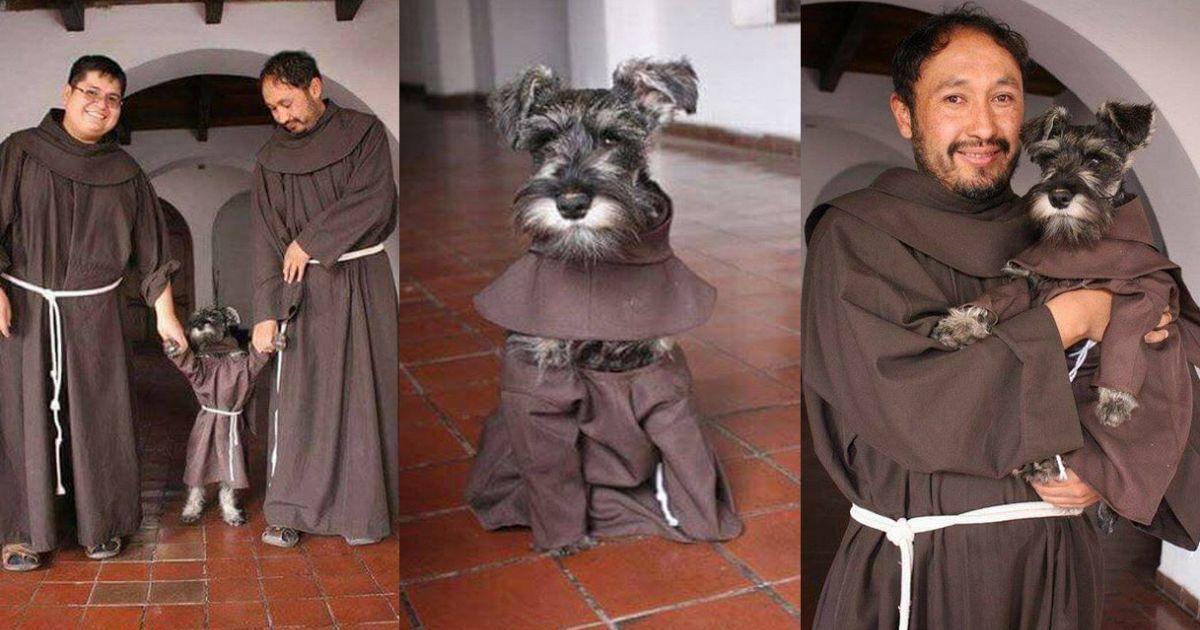 Conoce el fraile de Cuatro patas en Monasterio