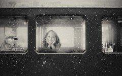 Animali in vacanza: come farli viaggiare in treno