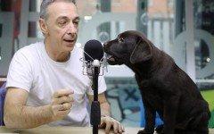 Linus: la carriera a Radio Deejay e l'amore per i cani